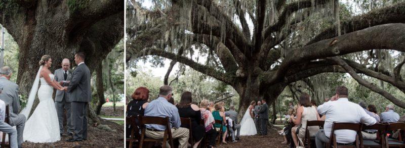 Mayor Tree Outdoor Wedding