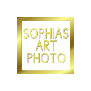 Orlando Wedding Photographer Sophias Art Photo