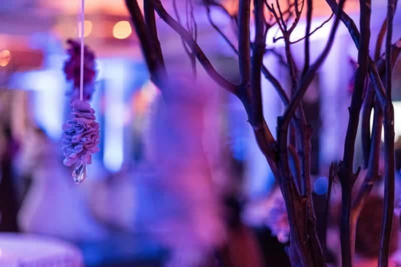 citrus-club-orlando-wedding