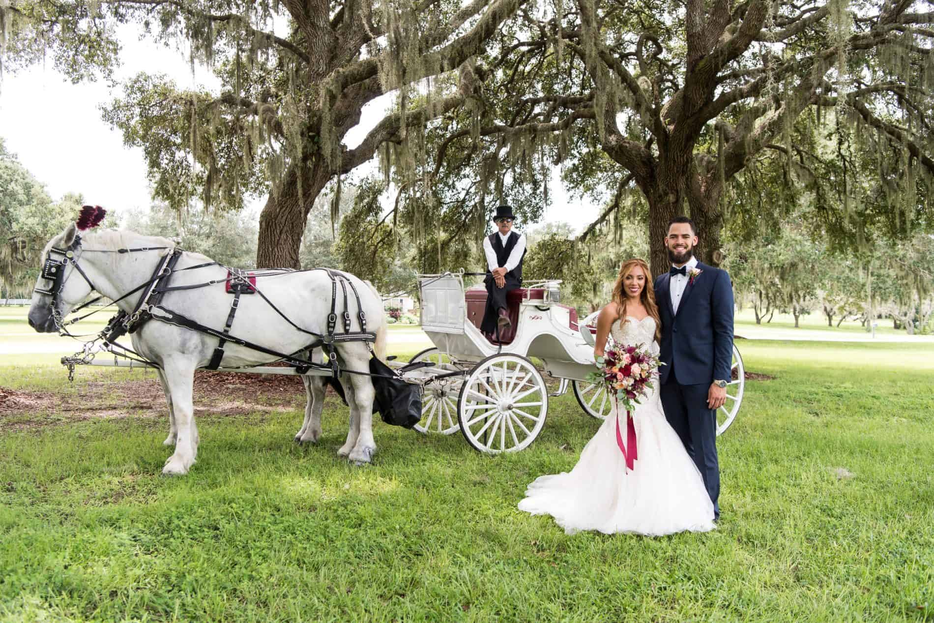 Wedding Honeyfunds can provide special touches like a horse drawn carriage